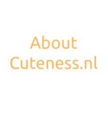 About Cuteness