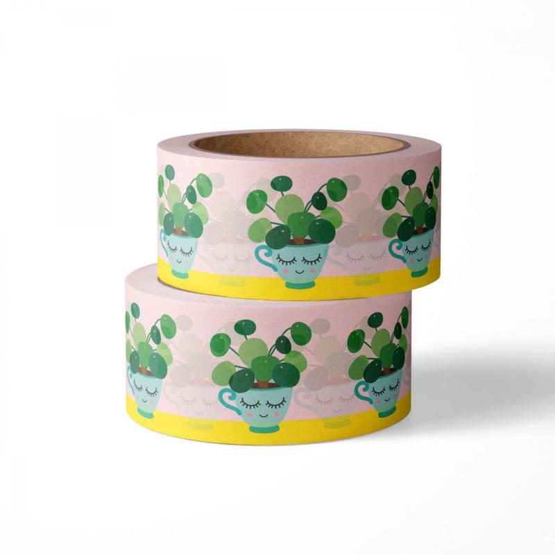 Washi tape pilea