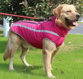 Winterjas / regenjas voor grote hond | XL, XXL, 3XL