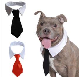 Honden stropdas rood / zwart