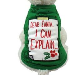 "kerst shirtje ""Explain"" | Groen | L"