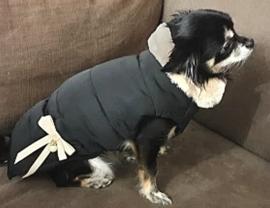 KENDIS hondenjas zwart | S, M, L, XL, XXL