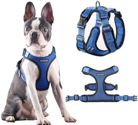 BORORO Honden harnas | blauw | S, L