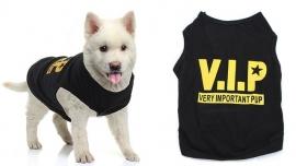 Shirt V.I.P | zwart | M, L