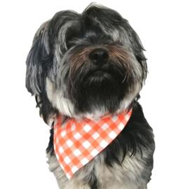 Oranje honden bandana