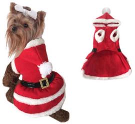 Kerstjurkje hond |,M