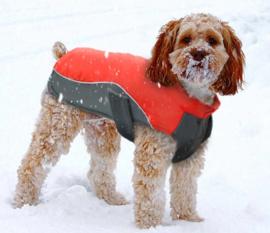 regenjas  hond / winterjas | Rood / grijs | S, M, L, XL, XXL