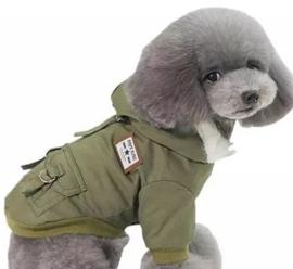 "Hondenjas ""Adventure Dog"" groen | S, M"