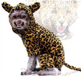 Honden kostuum luipaard | XS, S, M, L, XL, XXL