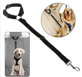 Verstelbare autogordel hond | zwart | 2.5cm