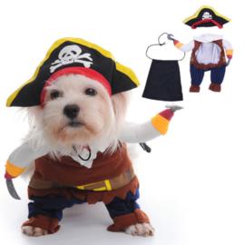 Honden kostuum piraat |  XL