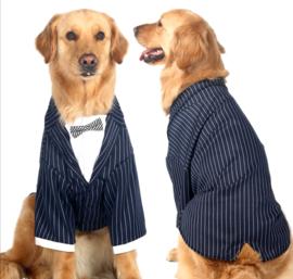 Honden kostuum / trouwkostuum grote hond | 6XL, 7XL