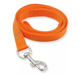 Oranje hondenriem / looplijn voor de hond