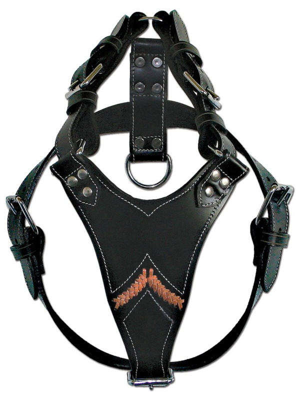 DOXTASY Gladiator tuig zwart