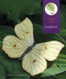 Vlinder Citroen