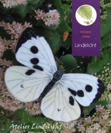 Vlinder Koolwitje