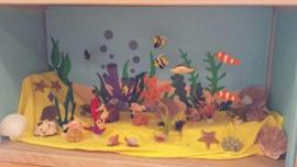 Aquarium (klantenfoto)