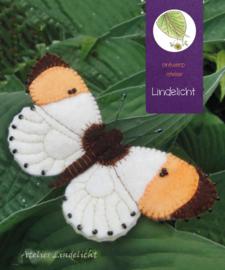 Vlinder Oranjetip
