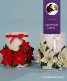 Materiaalpakket Kerstlichtje rood of witgroen zonder patroon