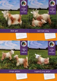 Drie geitenpakketten