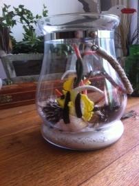 Vissen in windlicht (klantenfoto)