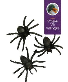 Spinnen 4 stuks