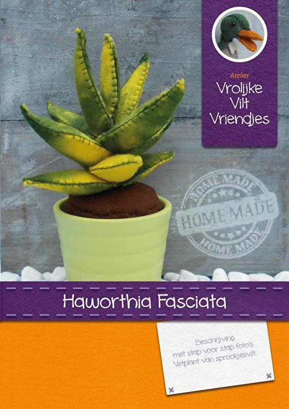 Vetplant Haworthia Fasciata