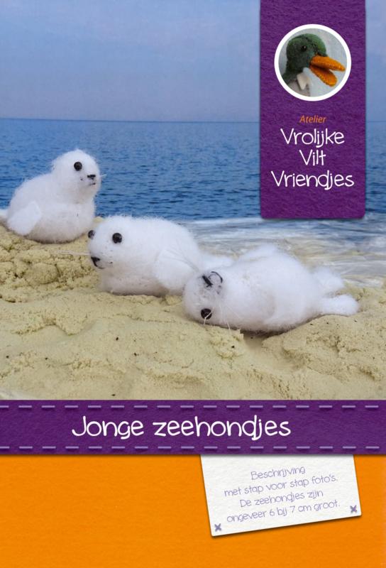 Jonge zeehondjes