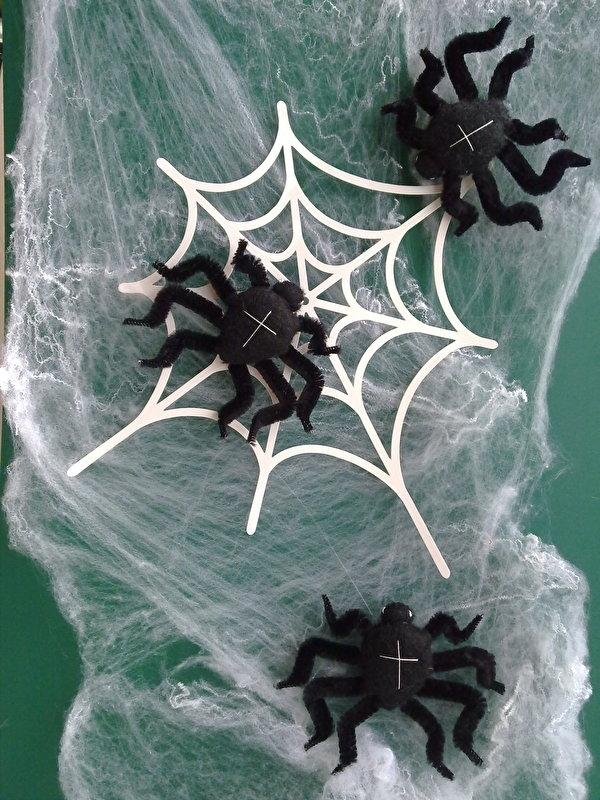Harige spinnen (klantenfoto)