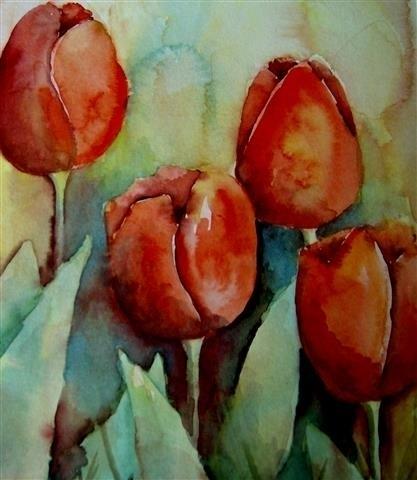 Tulp (rood)
