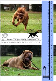 BORDEAUX DOG SENSITIVE  INHOUD 15 KG