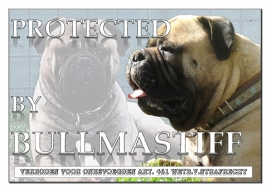 PROTECTED BY BULLMASTIFF 2