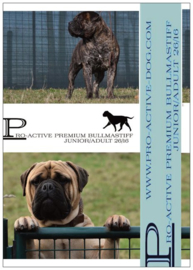 BULLMASTIFF PREMIUM JUNIOR/ADULT 15 KG (GEPERST)