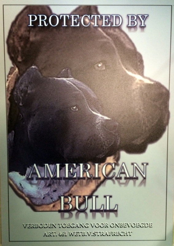 PROTECTED BY AMERICAN BULL