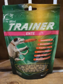 Wallitzer Mini Trainer Eend