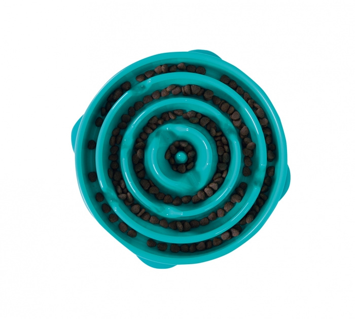 Fun Feeder Slo-Bowl Regular/Large Turquoise