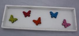 Lijst vlinders