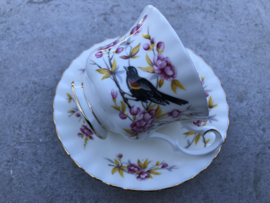 Engelse koffiekop Royal Albert Redwing
