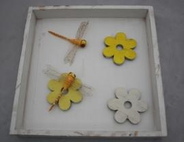 Lijst libelles