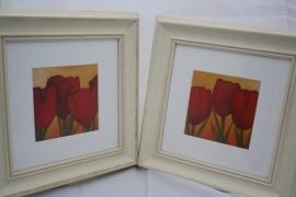 Wanddecoratie tulp