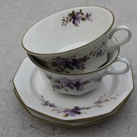 Theekopjes  paarse viooltjes Winterling
