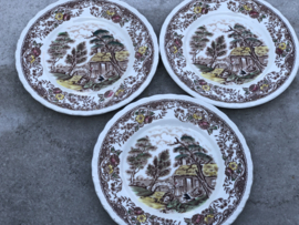 Engelse gebaksbordjes Royal Tudor Ware