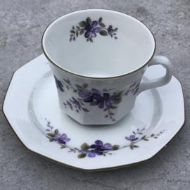 Theekopje viooltjes Winterling