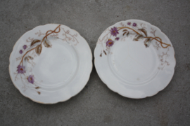Oude kleine bordjes paarse bloem