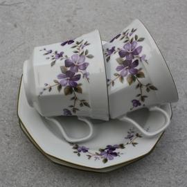 Koffiekopjes paarse viooltjes