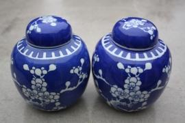 "Blauwe ""chinese"" potten"