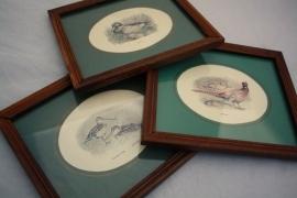 3 schilderijtjes pauw, eend en snip