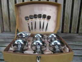6 stuks rvs Ijscoupes met lepeltjes in luxe doos