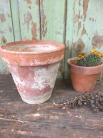 Oude terracotta pot