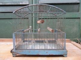 Metalen Franse blauwe vogelkooi